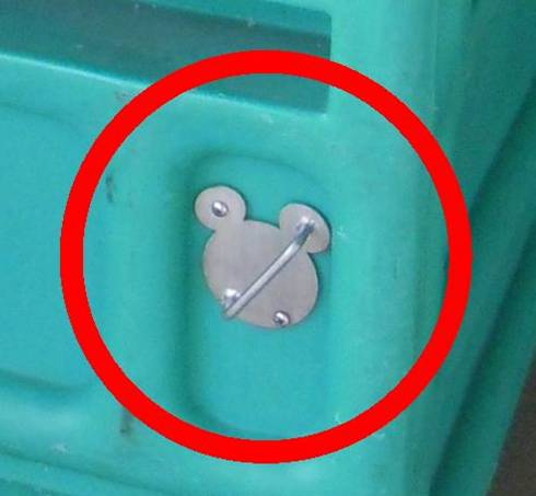 Hidden Mickey at Disney World