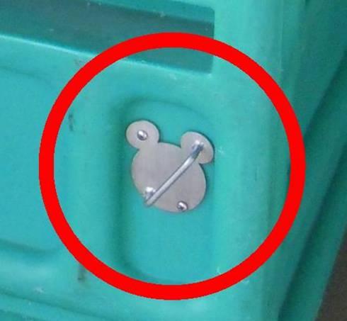 Hidden Mickey at Disney World