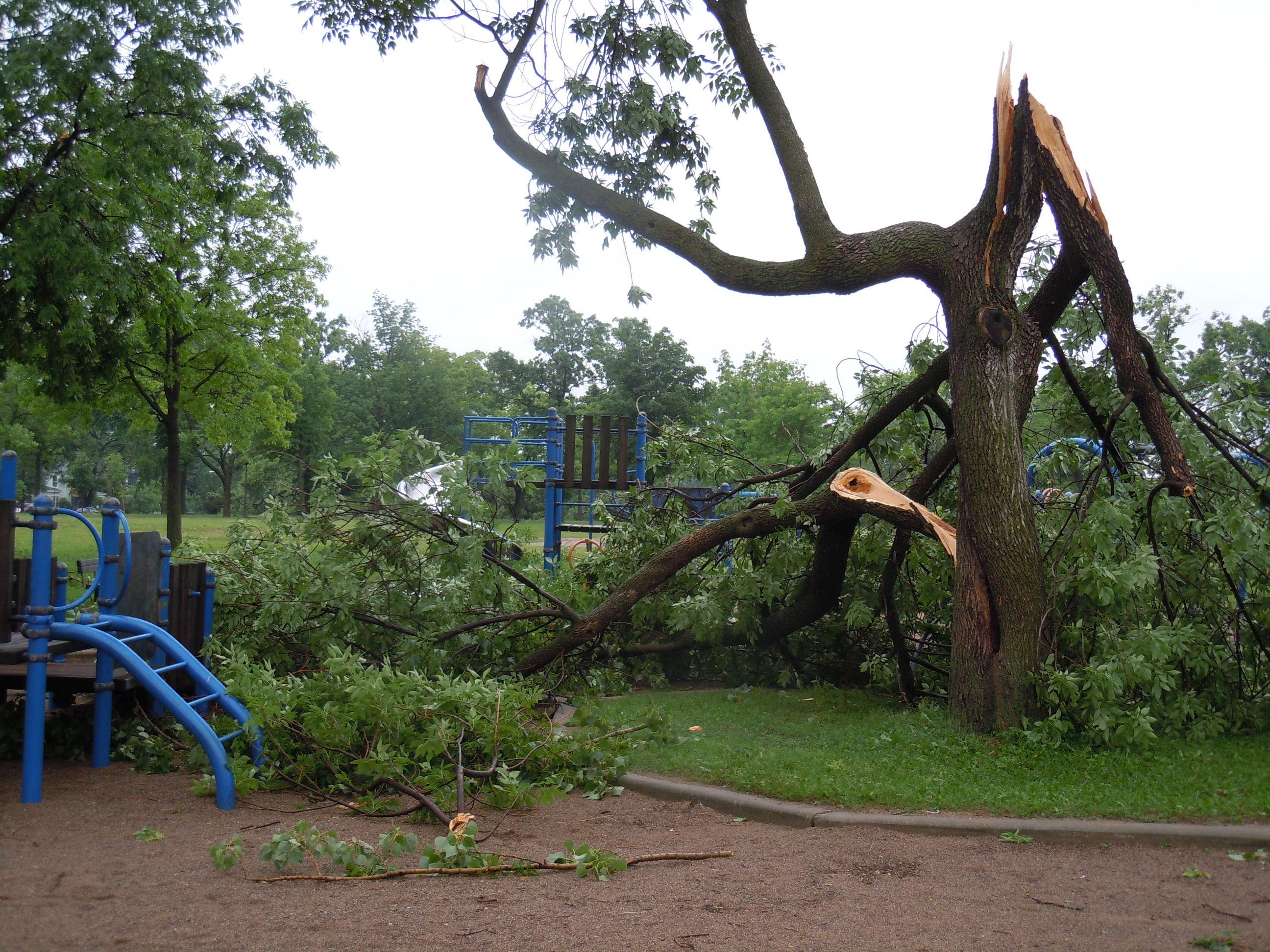 Mpls Storm 15