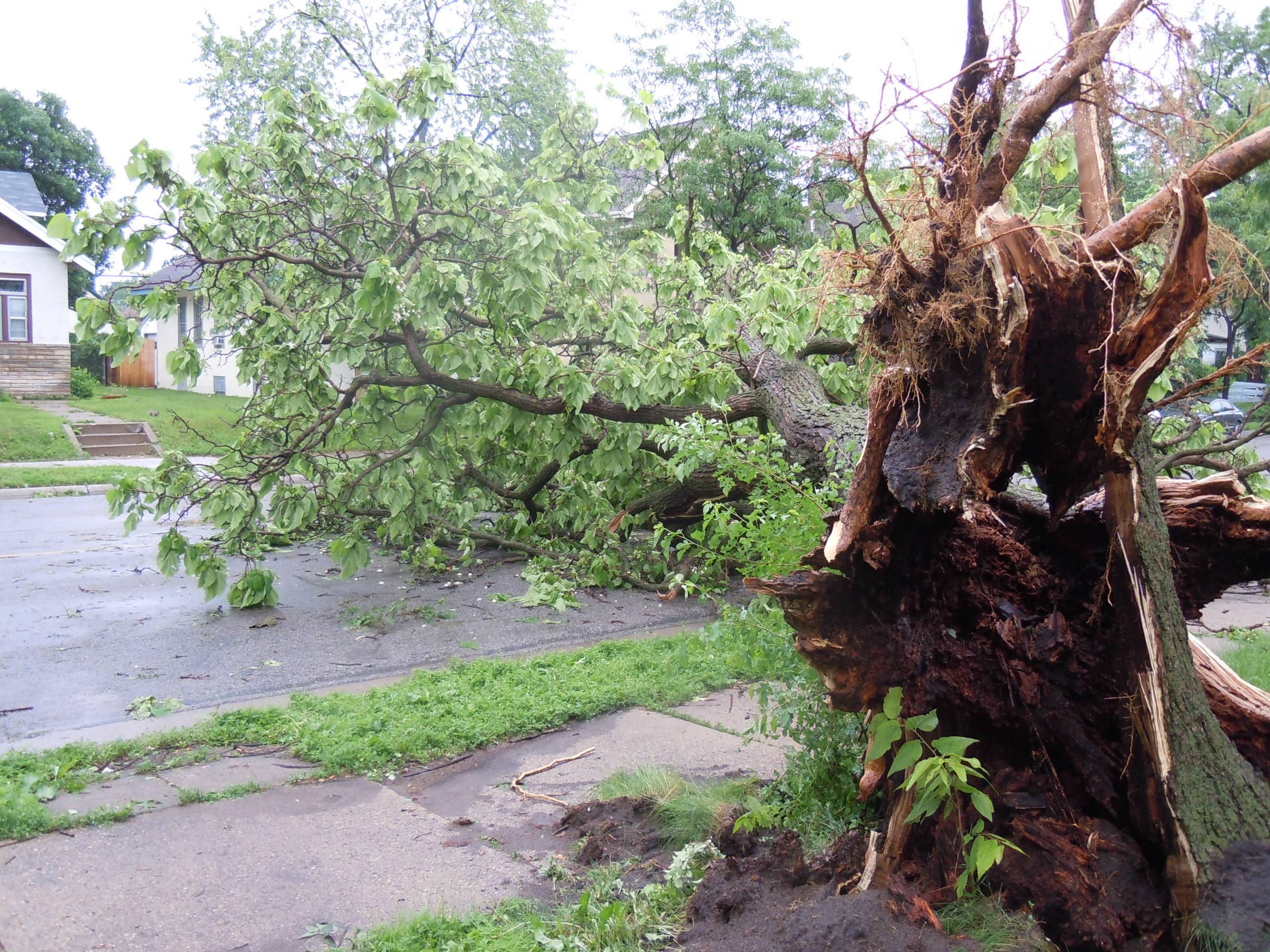 Mpls Storm 26