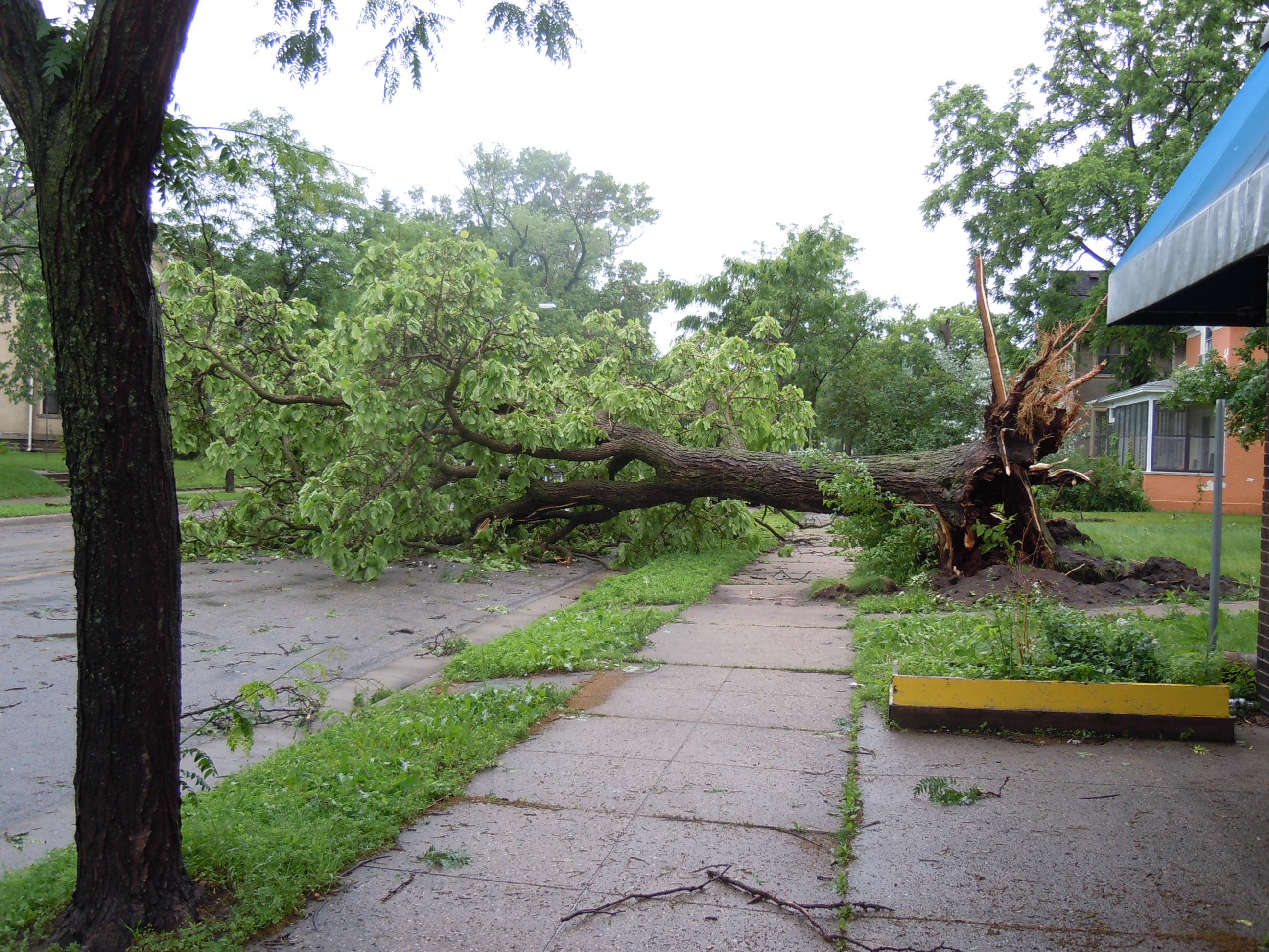 Mpls Storm 27
